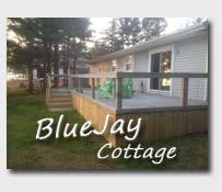 Cottage Blue Jay
